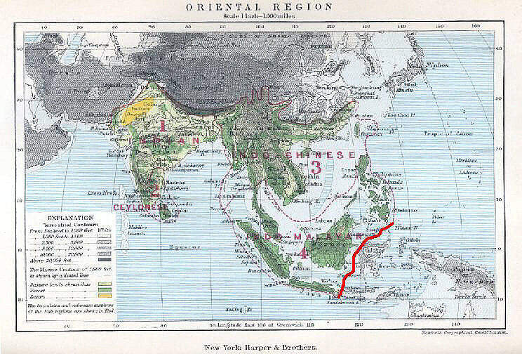 oriental region map  the geographical distribution of